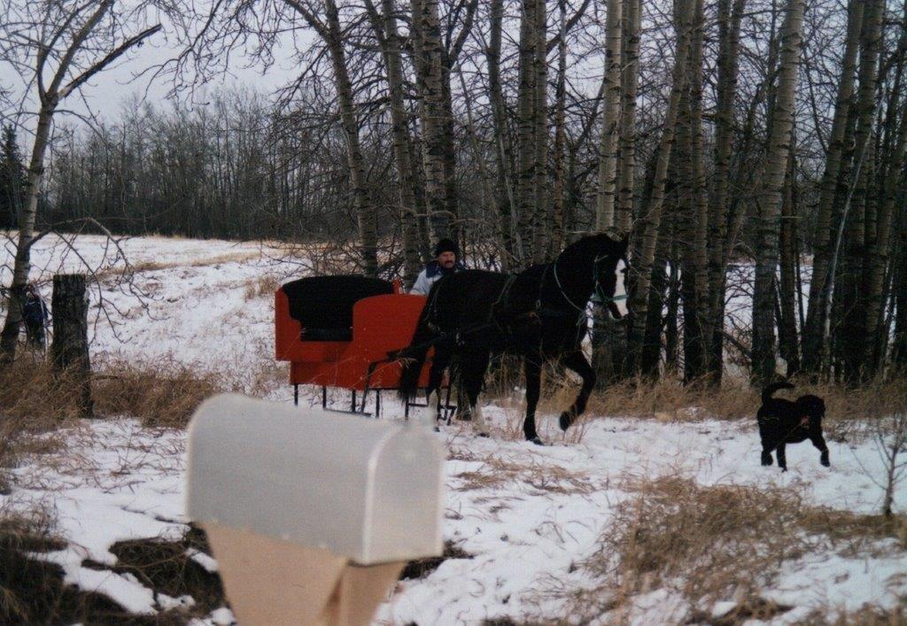 Ed Hamel & sleigh