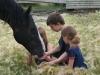 Jubal Dalton Belle Prairie 7-2011
