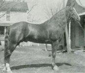 LastChance-1940